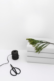 Carrete negro y tijera con apilados de libro apilados con ramita verde sobre fondo blanco
