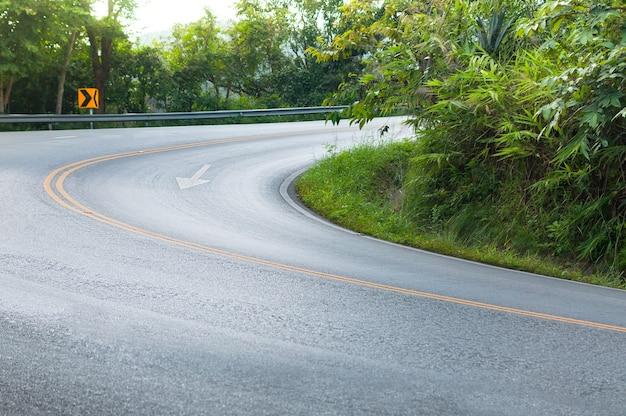 Carretera de campo con árboles a ambos lados, curva de la carretera a la montaña
