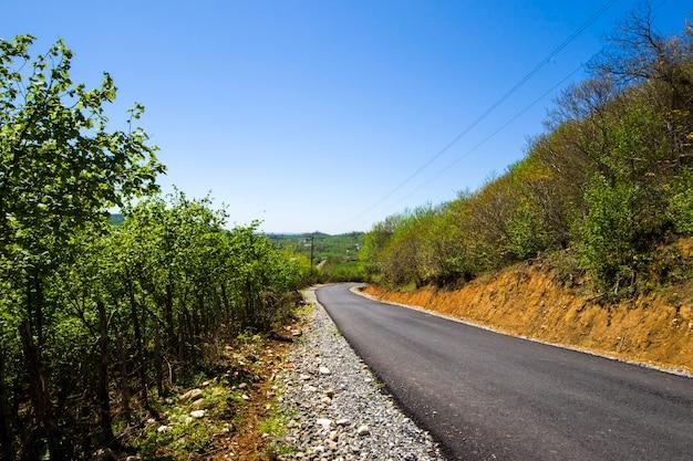 Carretera y carretera vacías en georgia durante la luz del sol, el cielo azul y los árboles