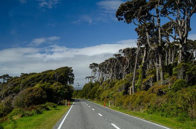 Carretera en la costa oeste, isla sur, nueva zelanda