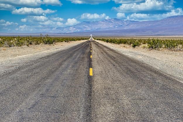 Carretera de hormigón recta larga entre el campo del desierto