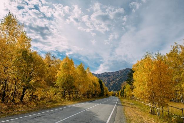 Carretera de montaña de asfalto entre los abedules amarillos de otoño y rocas altas bajo un hermoso cielo nublado