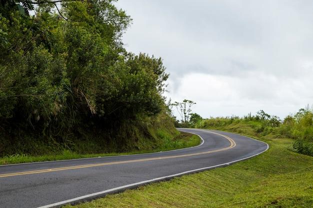 Carretera de montaña vacía cerca de la selva tropical