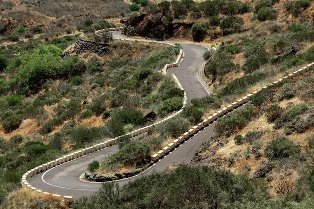 Carretera tropical con fondo desértico