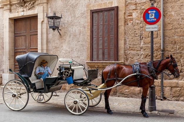 El carro con el caballo. el carro con un gracioso caballo bayo, y dormido en ella un cochero aparcado frente a la galería.