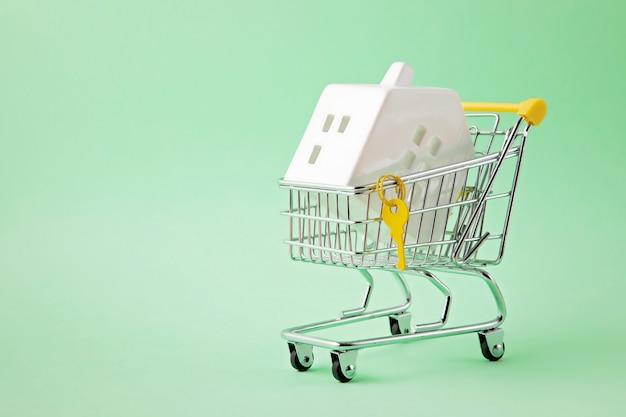 Carro de compras con manguera en miniatura en el interior.