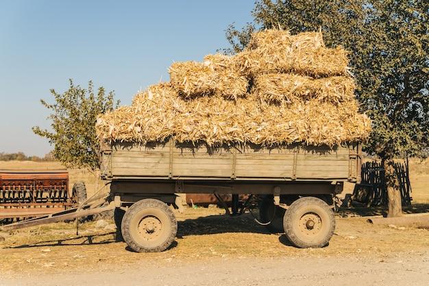 Carro de madera con fardos de heno. cosecha en otoño. agricultura y ganadería.