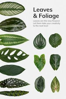 Cartel de hojas y follaje.
