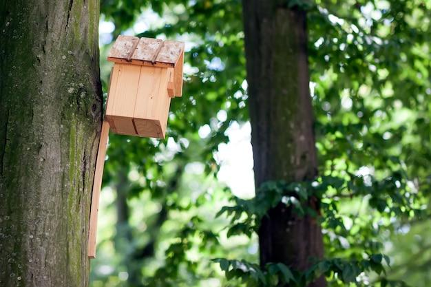 Casa de madera del pájaro amarillo o nidal en un árbol en el parque de verano o bosque.