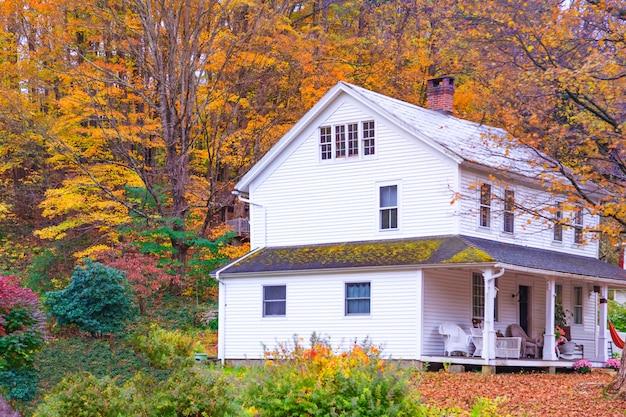 Casa de madera rural blanca rodeada de fondo de bosque natural