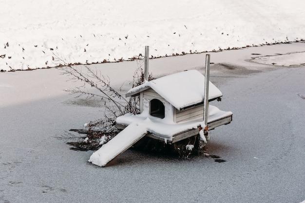 Casa para pájaros en el lago en invierno