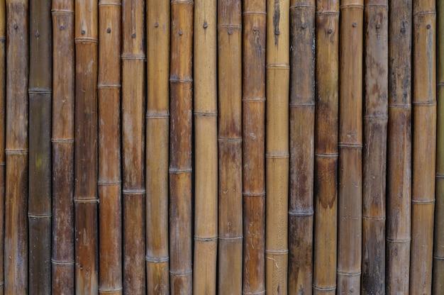 Casa de pared de bambú