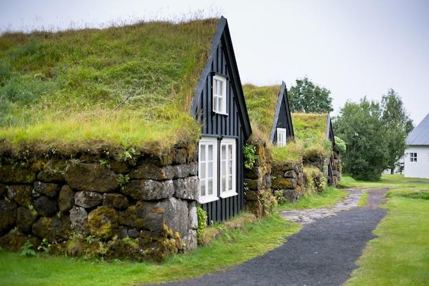 Casa rural típica islandesa cubierta de maleza en un día nublado