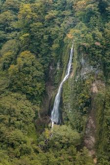 Cascada en el bosque, vista del paisaje de kokonoe yume desde el puente colgante de kokonoe yume