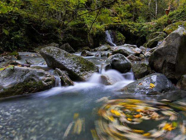 Cascada con hojas sobre rocas en la pradera con agua que fluye