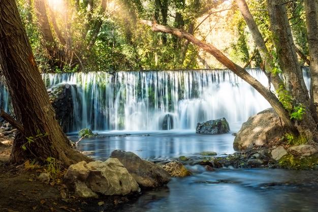 Cascada natural en el bosque con luz solar entre vegetación y rocas