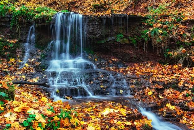 Cascada en otoño la luz del sol belleza mundo cárpatos. ucrania. europa