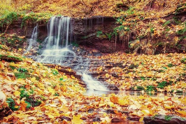 Cascada en otoño la luz del sol. mundo de la belleza. montes de cárpatos. ucrania. europa