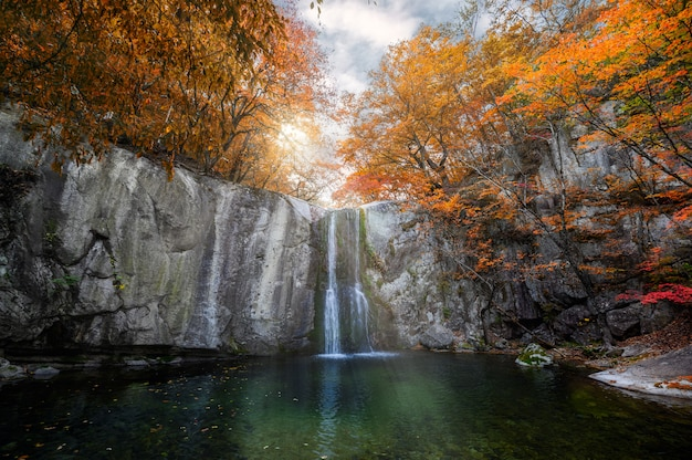 Cascada que fluye en el bosque de otoño