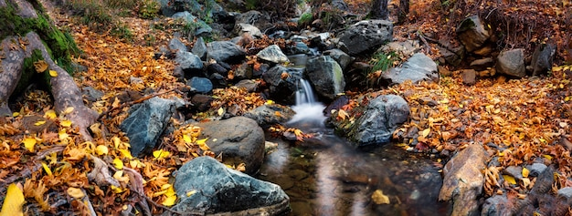 Cascada en un río de montaña en el bosque de otoño
