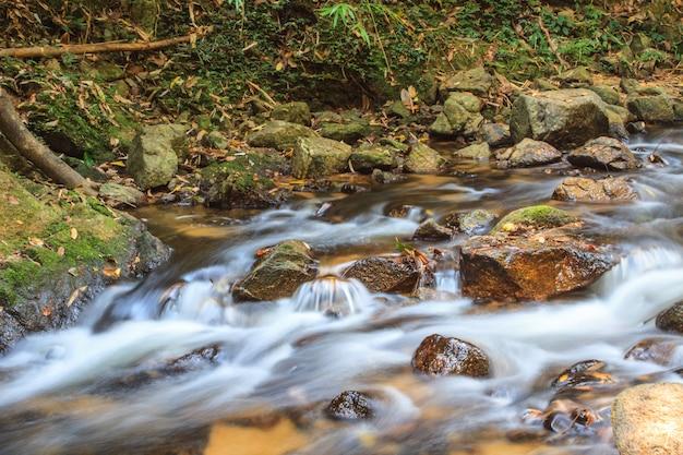 Cascada y rocas cubiertas de musgo.