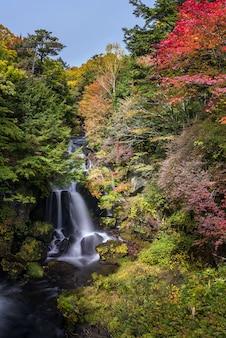 Cascada ryuzu bosque otoñal nikko japón