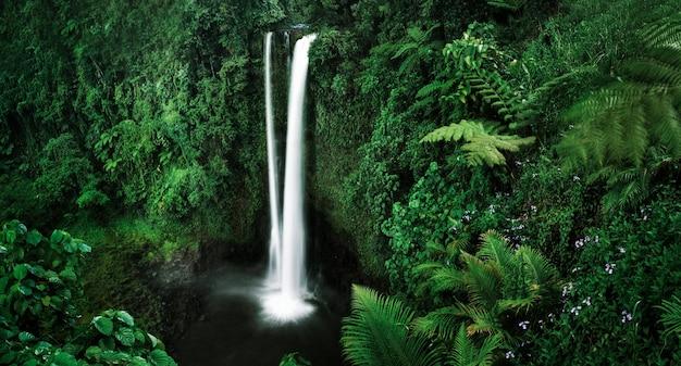 Una cascada en samoa
