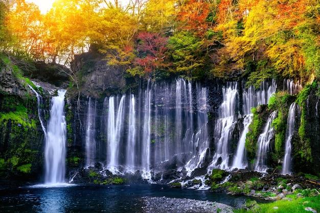 Cascada de shiraito en japón.