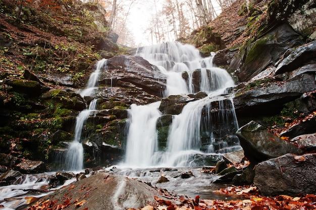 Cascada shypit en borzhava, pueblo de pylypets en las montañas de los cárpatos. ucrania. europa. increíble cascada del mundo en el bosque de otoño. belleza del mundo.