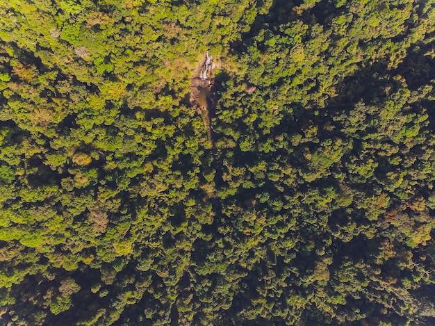 Cascada tam nang, parque nacional sri phang-nga, distrito de takuapa, phang-nga, tailandia.