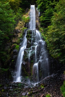 Cascada trusetaler que fluye a través del bosque en alemania
