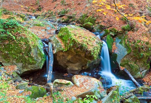 Cascadas en rocky stream, que atraviesa el bosque de montaña de otoño