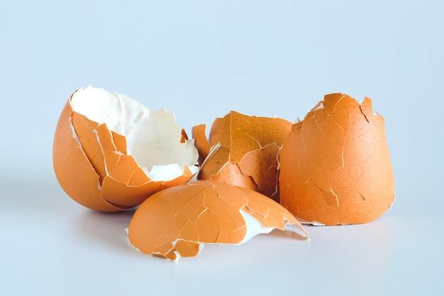 Cáscara de huevo esparcida de huevo hervido sobre un fondo blanco.