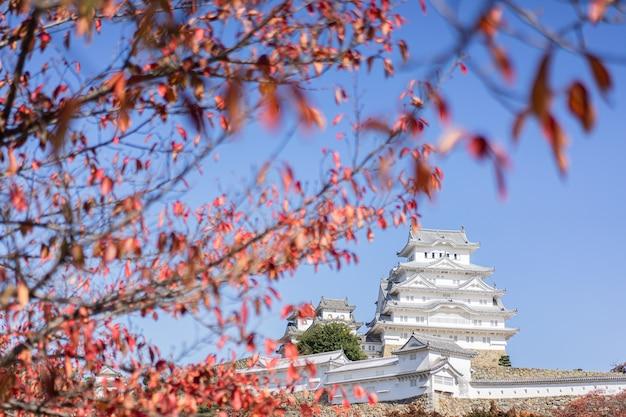 Castillo de himeji y hojas de otoño, hojas de arce rojo, japón