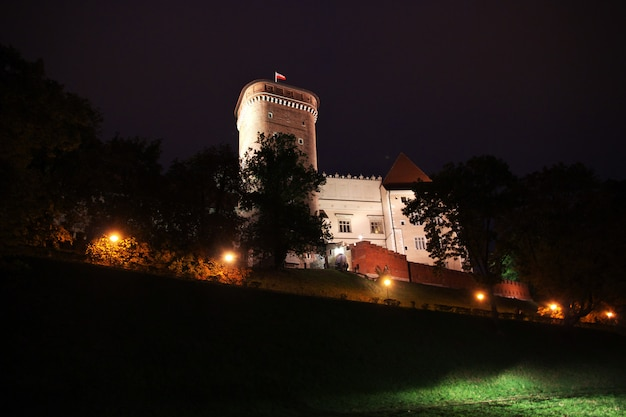 El castillo de noche en la ciudad de cracovia de polonia