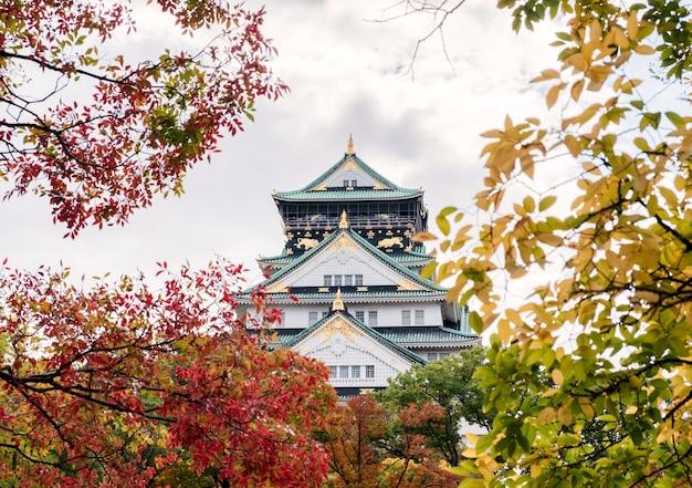 Castillo de osaka en jardín de hojas de otoño en osaka, japón