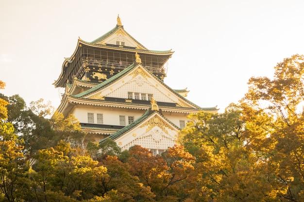 Castillo de osaka en osaka con hojas de otoño. concepto de viaje de japón