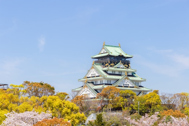 Castillo de osaka con primeros planos de flor de cerezo