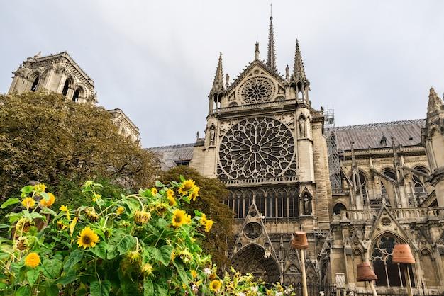 Catedral de notre dame de paris, parís, francia