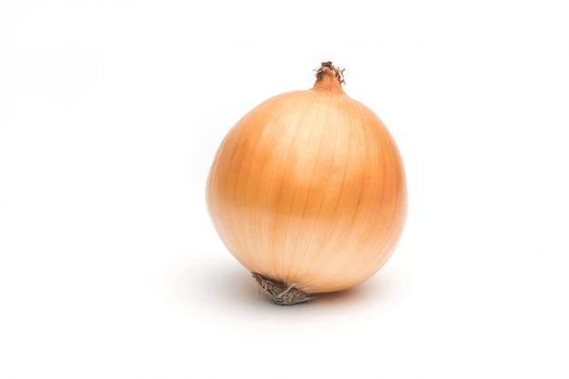Cebolla madura sobre un fondo blanco