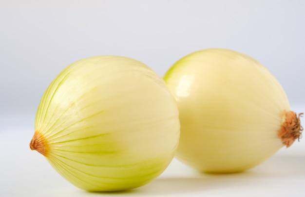 Cebolla sobre un fondo blanco.