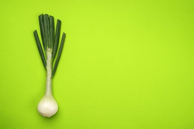 Cebolla sobre fondo verde, vista superior sobre fondo verde