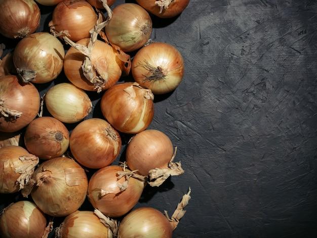 Cebollas amarillas frescas sobre fondo negro de hormigón. cebollas con copia espacio. cebollas frescas en clave baja. luz dura. vista superior.