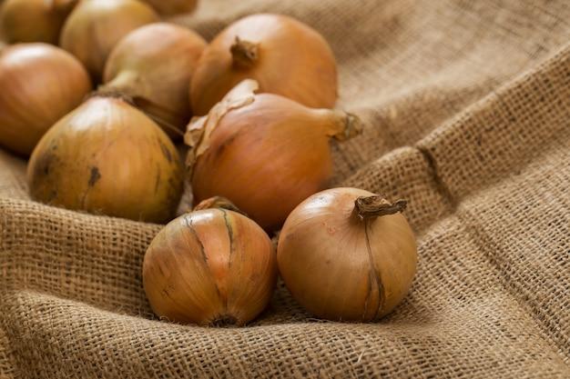 Cebollas en manta