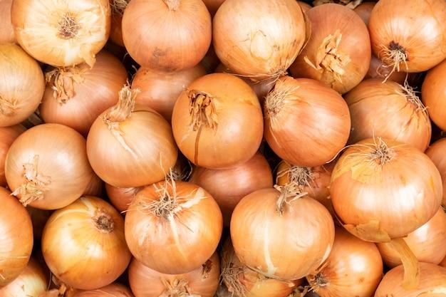 Cebollas en el mercado