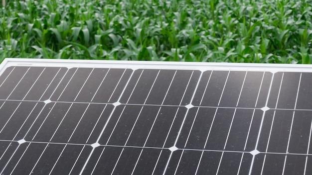 Célula solar en granja. módulo fotovoltaico para la agricultura.