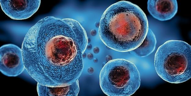 Células madre embrionarias, terapia celular