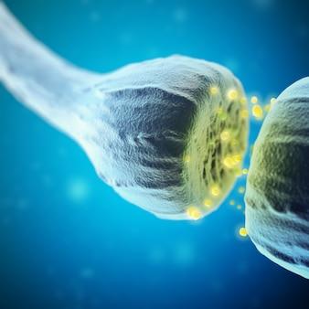 Las células synapse y neuron envían señales químicas eléctricas. representación 3d