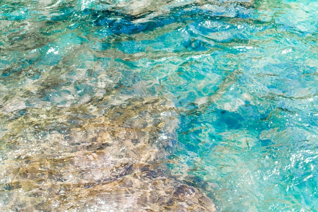 Cerca de agua cristalina ondulada en la playa