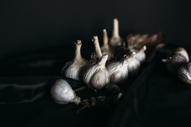 Cerca de ajo blanco orgánico